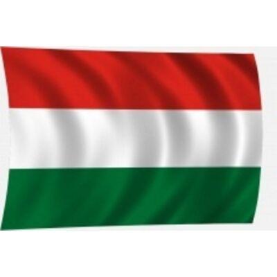 Zászló magyar 20x30 rúdra